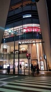 WACCA.jpg
